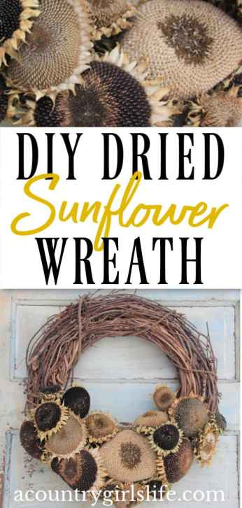 how to dry sunflowers