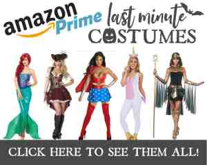Best Last Minute Disney Costumes for Women on Amazon Prime