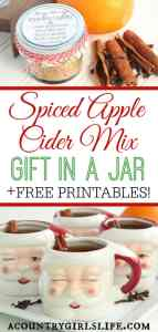 Quick & Easy Holiday Spiced Apple Cider Recipe (with DIY Christmas Gift Option!)
