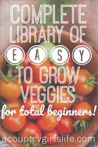 13 Easy To Grow Fruits & Vegetables for Absolute Beginning Gardeners