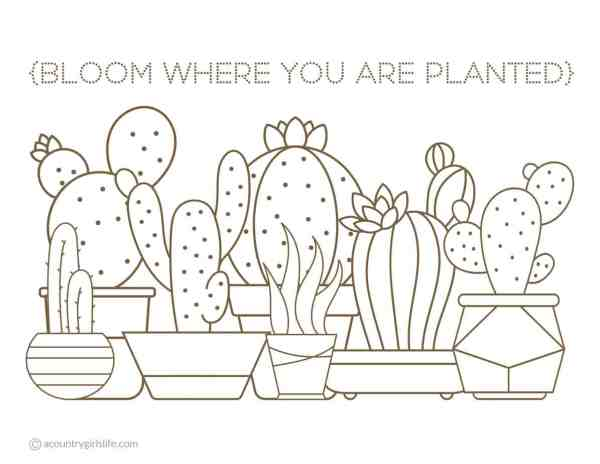 free printable succulent and cactus coloring pages for adults