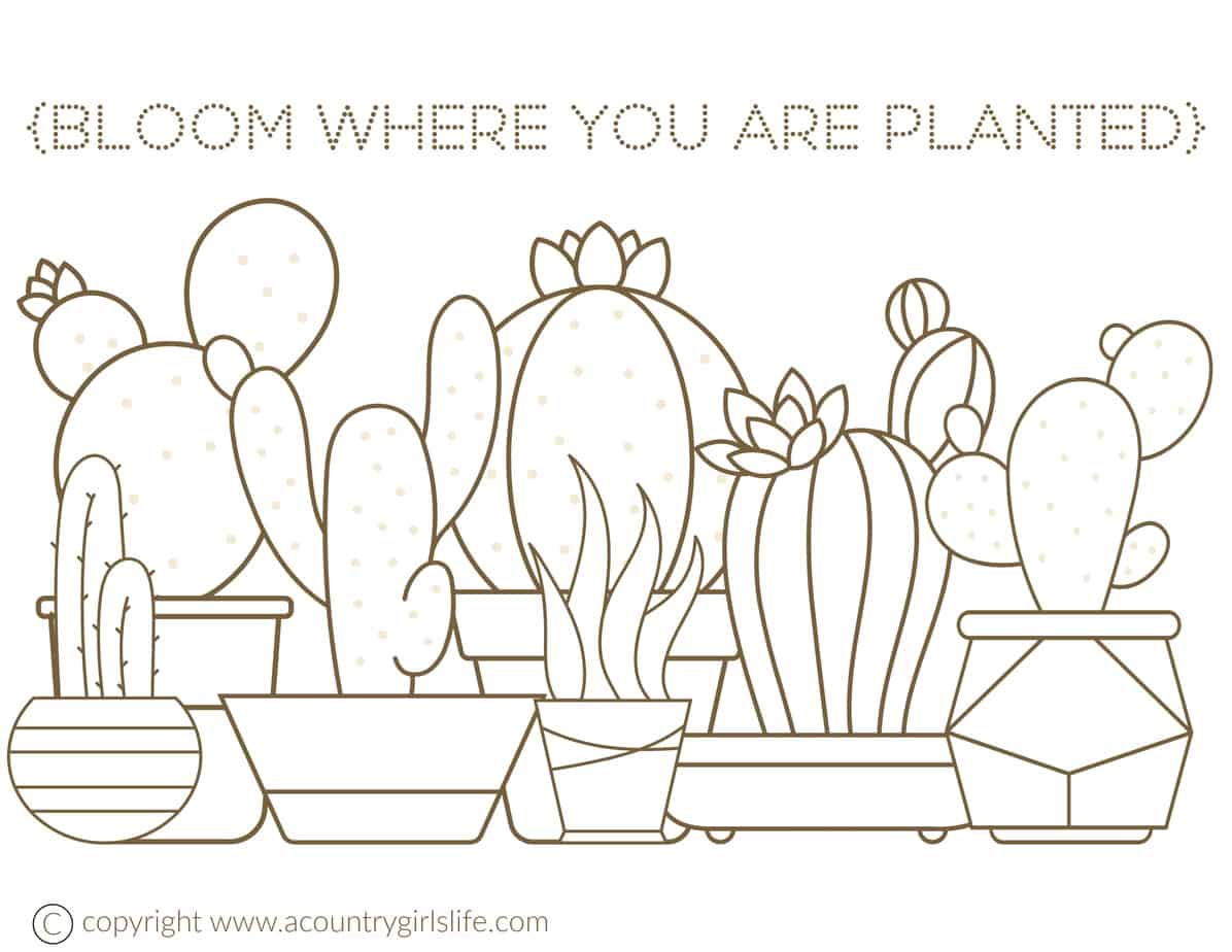 Free Printable Adult Coloring Pages Cactus Succulents A Country Girl S Life