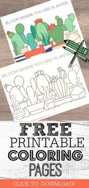 Free Printable Coloring Pages for Adults in Florals and Succulents!