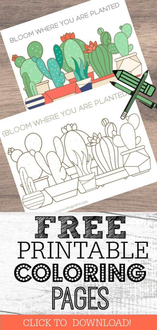 free printable coloring pages adults