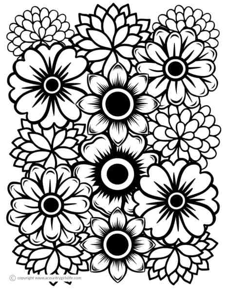 Free Printable Coloring Pages for Adults in Florals and Succulents ...