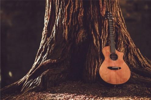 Holz klingt