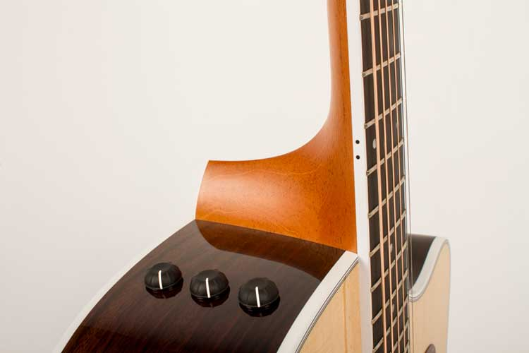Taylor410ce-Knobs