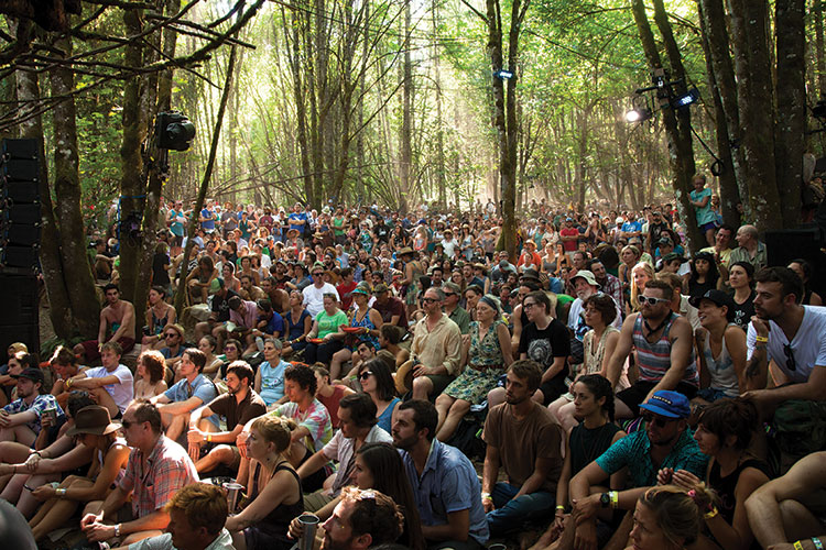The Woods Stage crowd at Pickathon 2015 (photo by Tim LaBarge)