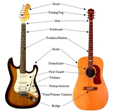 Acoustic And Electric Guitar Parts And Description