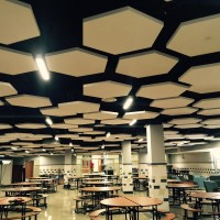 acoustical panels | Acoustics First BLOG