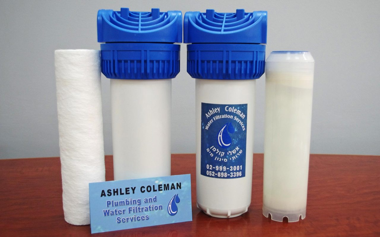 Double whole-house filtration system