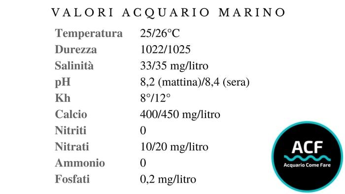 valori acquario marino