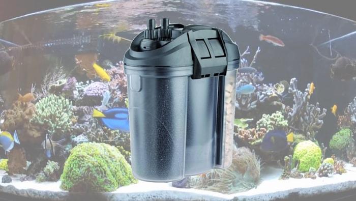Il filtro meccanico nell'acquario marino