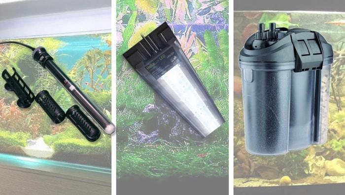 i 3 strumenti fondamentali per acquario
