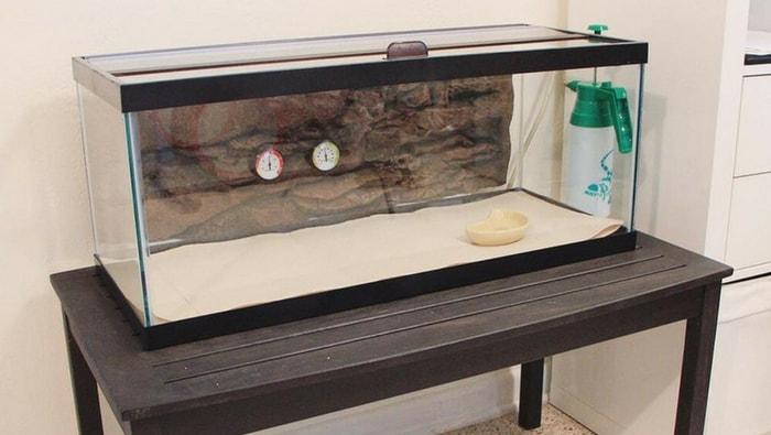acuario de cuarentena