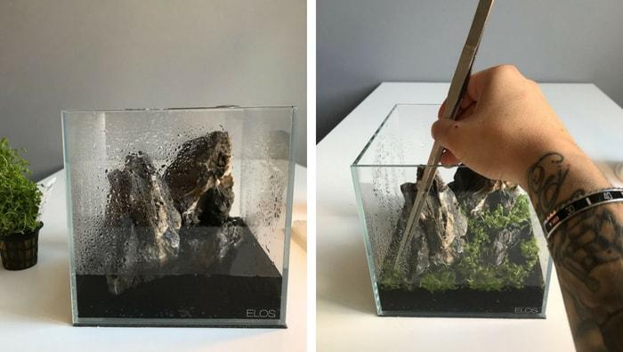 aquascape nano acquario