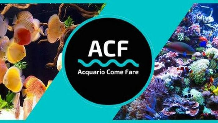gruppi Facebook di acquariofilia