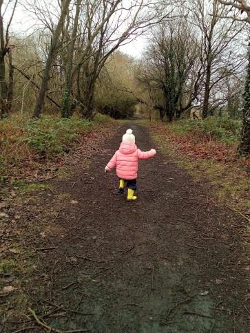 winter-forest-walks