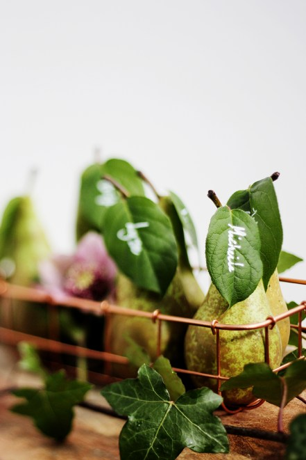 BloesemPhotography_pears_09_800@1200