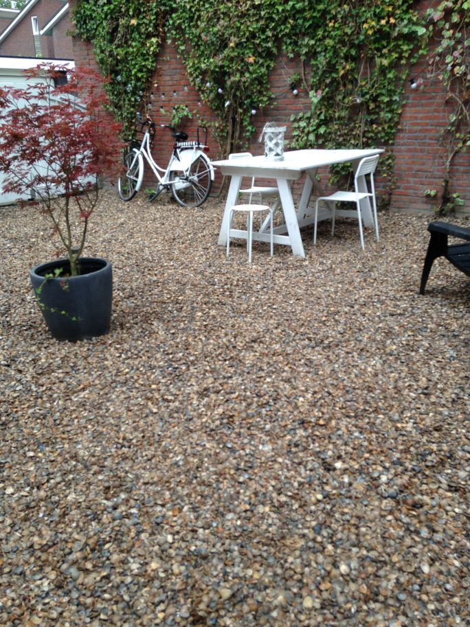 seaside garden in the suburbs - shells in the garden instead of pebbles or stones (12)