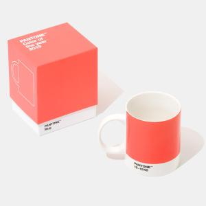 Pantone® Living Coral é a cor do ano de 2019 - Acredite.Co 5