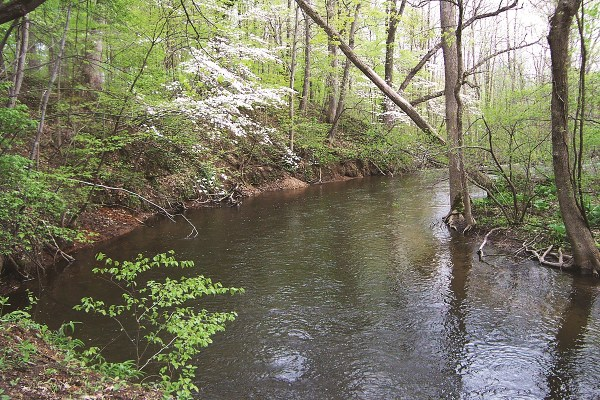 Photo of Fawn River Nature Preserve