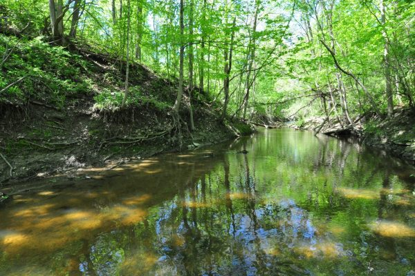 Photo of Heinzerling Family Five Points Nature Preserve