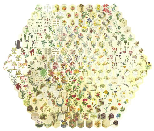 Mario Klingemann, 251 Random Flowers Arranged by Similarity