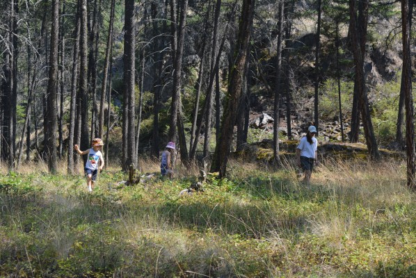 Geocaching in Ellison Provincial Park