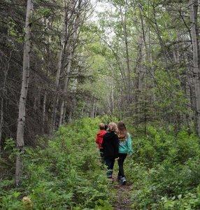 Trails at Wabamun Lake