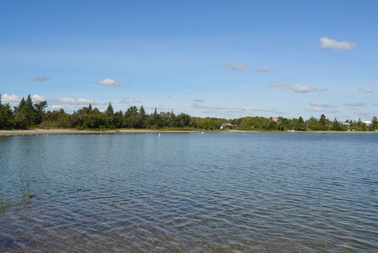 dilberry-lake-day-use-beach