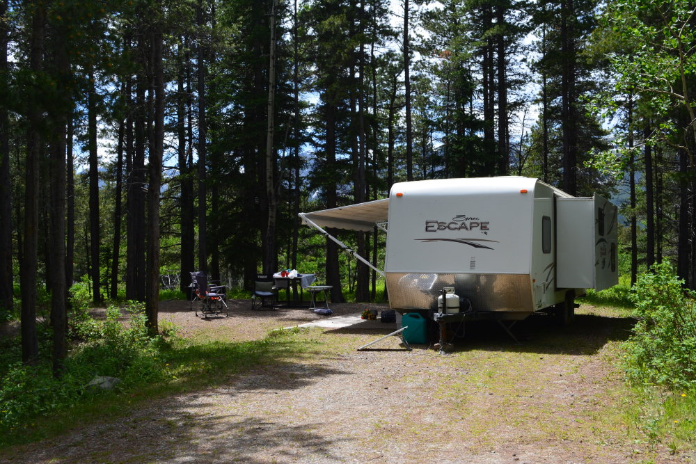 campsite with RV in front of trees