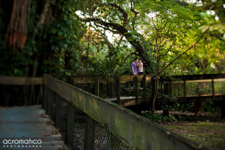 Danay Joshua Tree Tops Park Engagement Session South