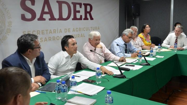 Anuncia Gobernador apoyo de 7.5 mdp para citricultores veracruzanos