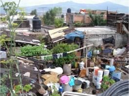 """El gobierno del estado de Veracruz debe establecer como objetivo principal y urgente de su Plan de desarrollo 2019-2024, la eliminación de la pobreza extrema, que es uno de los objetivos de la Agenda 2030 para el Desarrollo Sostenible establecida por la ONU. Esa es una condición básica para lograr una gran transformación de Veracruz. Porque Veracruz es hoy uno de los estados con mayor pobreza y marginación en el país. 2.5 millones de veracruzanos (50% de la población ocupada) se encuentra en """"Pobreza extrema por ingresos"""", ya que su ingreso laboral mensual no es suficiente para adquirir una canasta básica de alimentos cuyo precio es de 1,569 pesos (ya sea porque el ingreso es inferior a ese precio, ya sea porque de ese ingreso depende más de una persona). Esto hace que el estado ocupe el 6º lugar entre los estados de mayor población en pobreza."""