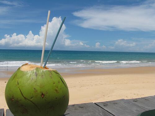 A partir de este viernes 21 y hasta el 23 de junio, se llevará a cabo el primer festival del coco en Coatzacoalcos.