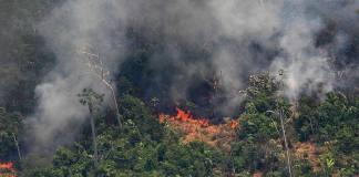 El grupo de las siete naciones más industrializadas del mundo (G7) acordó hoy la liberación urgente de 20 millones de dólares para el envío de aviones para combatir los incendios en la región de Amazonia, afectada por casi 80 mil puntos de fuego.