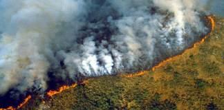 Según datos actualizados del Instituto Nacional de Investigación Espacial (Inpe), los incendios forestales en la selva amazónica, han batido récord en lo que va del año, con un total de 72 mil 843 focos, lo que se traduce en 83 por ciento más con respecto al mismo periodo de 2018.
