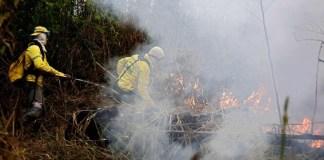 El presidente de Brasil, Jair Bolsonaro firmó un decreto que prohíbe las quemas en todo Brasil durante dos meses para tratar de frenar la multiplicación de incendios en la Amazonía, en medio de una creciente presión internacional.