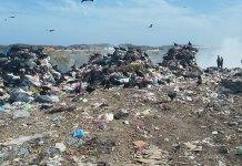 La dirección de Servicios Municipales del Ayuntamiento de Veracruz informó que para este domingo 25 de agosto, se implementará una ruta adicional de recolección de basura en colonias y fraccionamientos de la ciudad.
