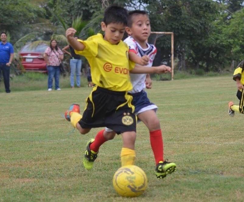 La Liga Intermunicipal Talento Veracruzano lanzó oficialmente la convocatoria para la temporada 2019-2020, la cual arrancará el 14 de septiembre en su sede del complejo de fútbol La Primavera, en el municipio de Medellín de Bravo.