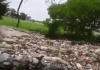 """Pobladores de la comunidad """"El Salto"""" en Ignacio de la Llave reportaron a través de redes sociales, los altos niveles de contaminación del Río Blanco."""