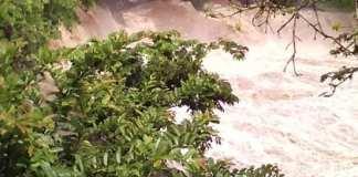 La Secretaría de Protección Civil (PC) reportó que al menos mil familias resultaron afectadas, particularmente en la Región de los Tuxtlas y municipios cercanos debido a las fuertes lluvias, generadas por el paso del Frente Frío número 4.