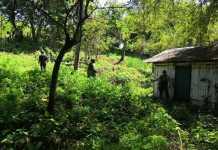 En atención a la denuncia sobre la privación ilegal de la libertad de una persona, la Secretaría de Seguridad Pública (SSP), a través de la Fuerza Civil, implementó un operativo de búsqueda en Cazones de Herrera.