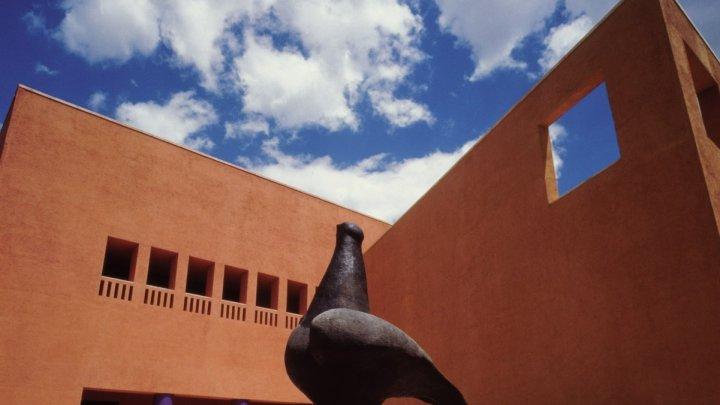 Suspenden UNAM apoyo a artista por presunta violencia de género