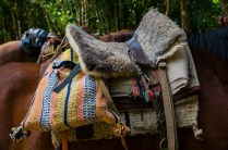 A typical Chilean pack horse saddle. I love the extra padding.