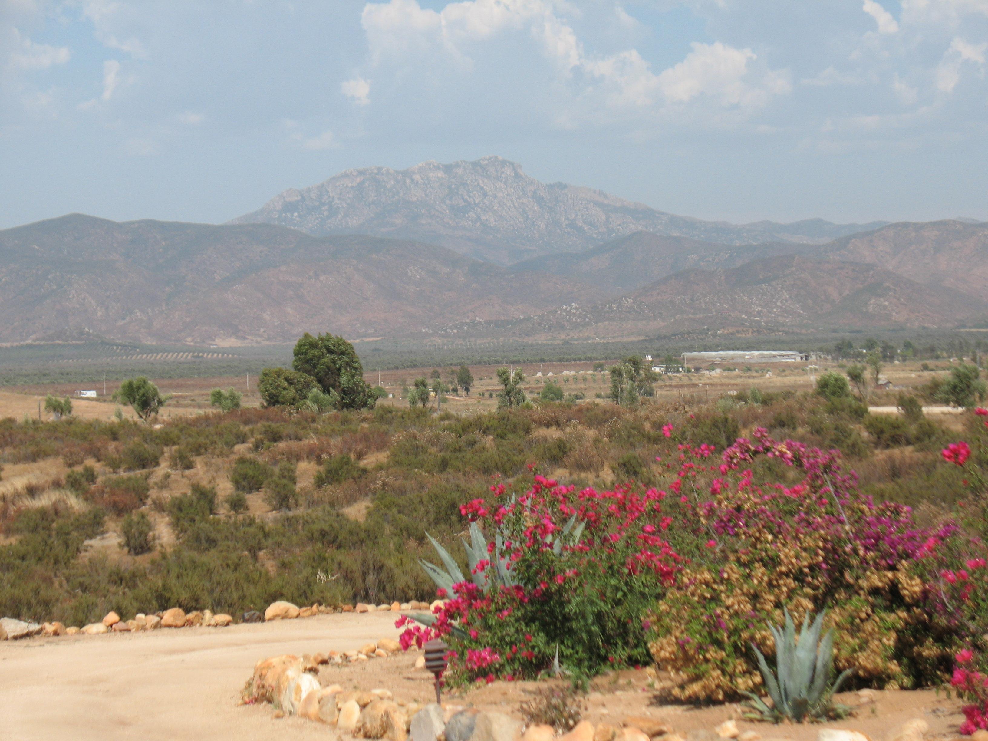 Guadelupe Valley, Baja California