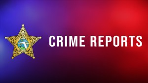 View Crimes and Incidents reported to the Alachua County Sheriff's Office at www.crimereports.com
