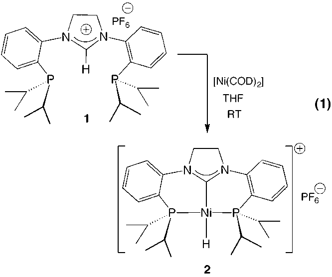 New Robust Tridentate N-Heterocyclic Carbene Ligands for C