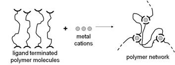 A Systematic Approach Towards the Synthesis of Metal
